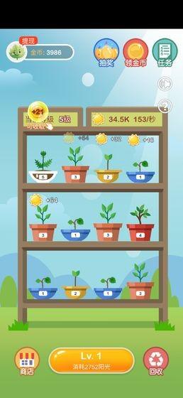 阳光金币屋app